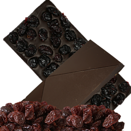 Chocolate Large Bar with Cranberries